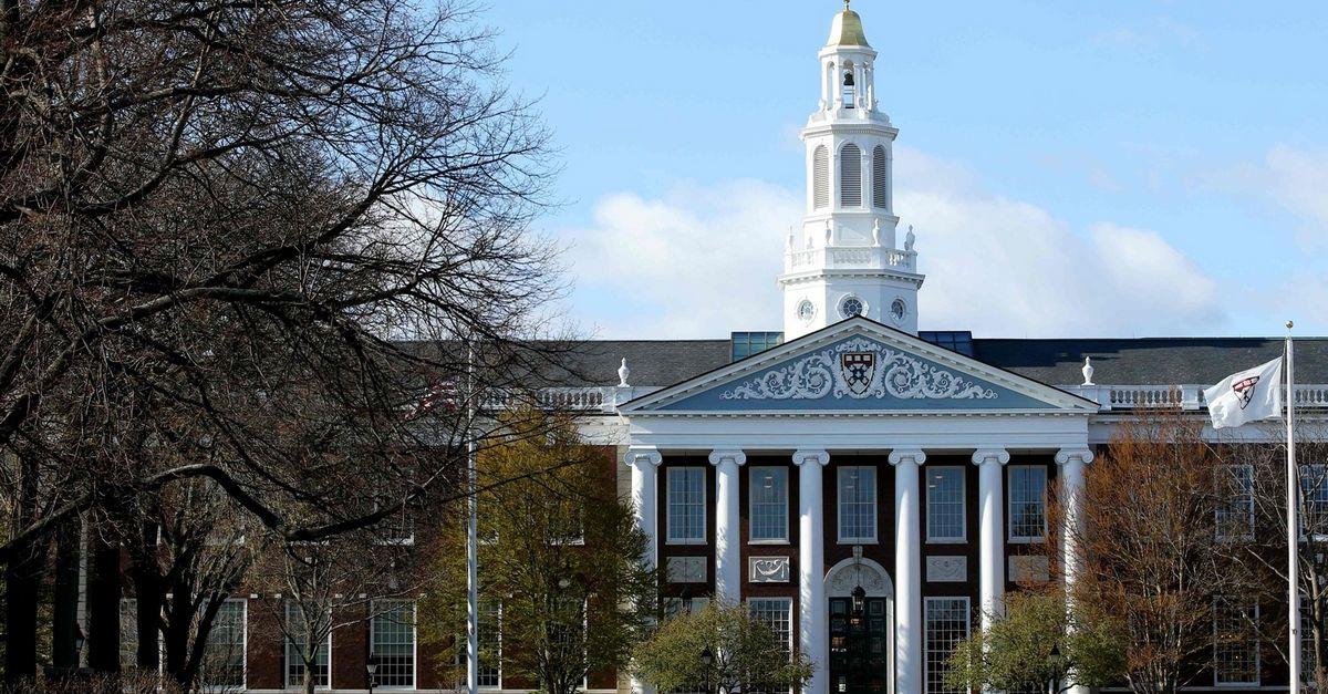 korporacijos tvarumo strategija harvardo universitetas