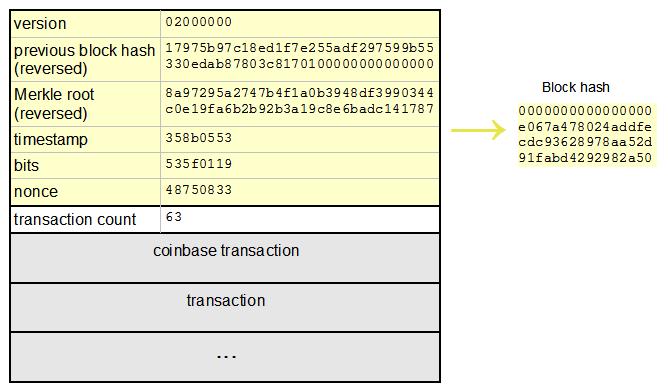 bitcoin hash type